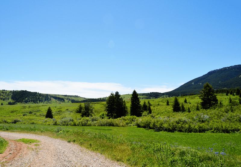 grannie geek pryor mountains southeast montana