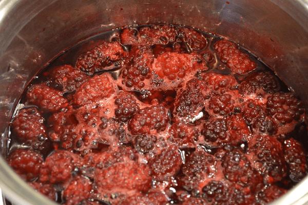 grannie geek, cooking down blackberries