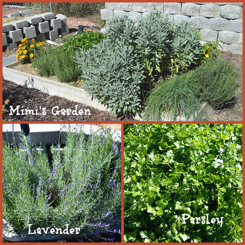 grannie geek, mimi's herb garden collage